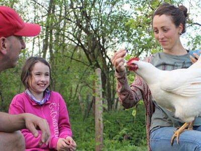 Beratung und Seminare für Hühnerhaltende